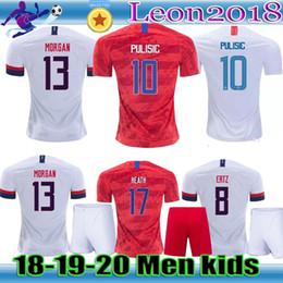 ad7a1a6de Adult kids 2018 2019 USA PULISIC Soccer Jersey 18 19 DEMPSEY BRADLEY  ALTIDORE MORGAN America Football jerseys youth United States Shirt