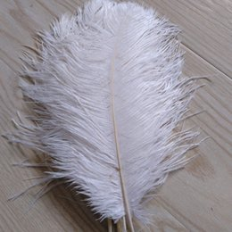 $enCountryForm.capitalKeyWord Australia - Free Shipping Ostrich Feather plumes white for Wedding decor centerpiece decoraction party event supply festive decor supply z134