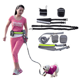 Extra small lEd collars online shopping - New Elastic Belt Running reflective dog leash lead sports jogging walking pet collar rope hand free waist dog leash set