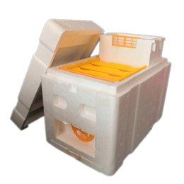 Опт 200X Mini Mating Box, полный мини-улей с пластиковыми рамками, коробка для опыления пчеловодством, Nuc Beehive для бесплатной доставкой