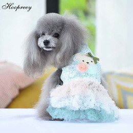 $enCountryForm.capitalKeyWord Australia - Summer Tulle Dog Clothes for Small Dogs Cute Bear Dog Cat Dress Princess Lace Tutu Skirt Pet Dresses for Chihuahua Teddy 10E