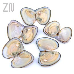 coin wrapping NZ - Cheap Beads Individually Wrapped Oysters with Large Pearl Birthday Gift Natural Freshwater Pearl Gifts Beads Jewelry & Accessories