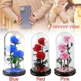 red dried flowers NZ - 2019 Dried Eternal Roses Flowers Endless Preserved Roses Flower In Glass Valentine's Day Birthday Gift Wedding Party Decor SH190920