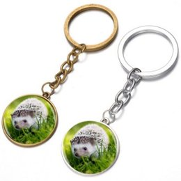 Russia Coin Australia - EXPORT RUSSIA USA CUTE HEDGEHOG PENDANT KEYCHAIN KEYRING AWESOME KEY ACCESSORIES KEY CHAIN KEY RING POPULAR CABOCHON STYLE BAG ACCESSORIES