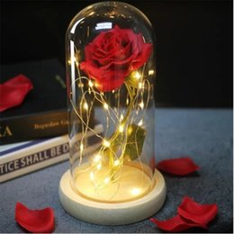 romantic birthday decorations 2020 - Romantic Eternal Rose Flower Glass Cover Beauty and Beast LED Battery Lamp Birthday Valentine's Day Mother Gift Hom