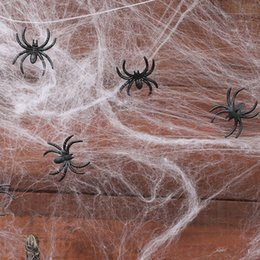 $enCountryForm.capitalKeyWord Australia - Halloween Scary Party Scene Props White Stretchy Cobweb Spider Web Horror Halloween Decoration For Bar Haunted House