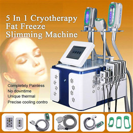 2020 Best Results Cryolipolysis Machine 360 Degree Contact Cooling Cryolipolysis Slimming Fat Freezing Slimming CE DHL Free Shipping on Sale