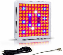 $enCountryForm.capitalKeyWord NZ - free ship 2pcs\1 lot 300w 600w lead grow light for grow lamp for greenhouse hydroponic indoor plant veg and flower replace