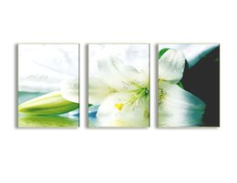 $enCountryForm.capitalKeyWord Australia - 3 Piece Canvas Painting Green White Lily Flower Picture Print on Canvas Wall Art for Home Living Room Decoration with Wooden Framed Artworks