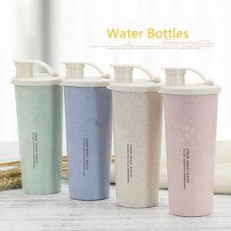 $enCountryForm.capitalKeyWord Australia - 1PC New 450ml Protein Powder Shaker Water Bottle Wheat Straw BPA Free Mixer Sports Fitness Protein Shaker Milk Shake Bottle