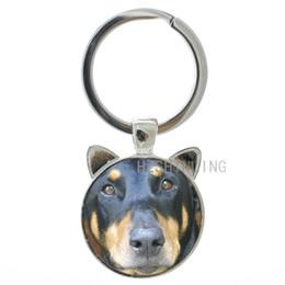 3c4b8dfd58b Glasses Holder Chain UK - TAFREE Vintage animal dog charms Doberman  Pinscher keychain keyring Best Doberman