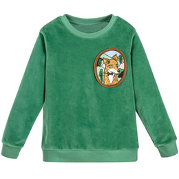 $enCountryForm.capitalKeyWord Australia - Baby Girl Sweatshirt 2019 Brand Children Green Pink Velour Fox Fleece Hoodie Girls Clothes Boys Long Sleeve Tops Kids T Shirts