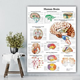 office panels NZ - 1 Panel HD Print Painting Human Brain Home Organs Decor Canvas Anatomy Poster Modular Medical Education Pictures Modern Office Wall Art