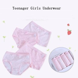 briefs pack Australia - 4pcs pack Young Girls Underwear Panties Cotton Baby Boxers for Girls Solid Color Teenage Girl Underwear Pink Blue Boxer Briefs