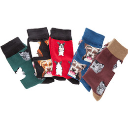 China Men's colorful Autumn dog socks in tube casual cotton socks supplier red tube animals suppliers