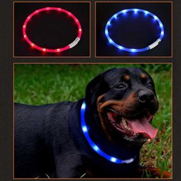 $enCountryForm.capitalKeyWord UK - Pet Waterproof USB Rechargeable LED Dog Collar Night Safety Flashing Pet Supplies Dog Accessories For Puppy LED Collar Leash