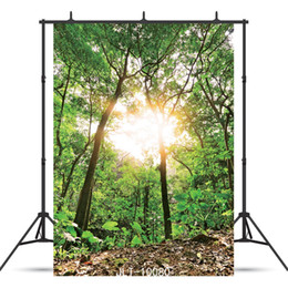 $enCountryForm.capitalKeyWord Australia - sunlight forest Vinyl photography background for portrait children baby shower new born backdrop photo shoot photocall