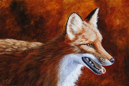 Red Ink Painting Australia - Artwork-red-fox-a-warm-day-Unframed Modern Canvas Wall Art for Home and Office Decoration,Oil Painting ,Animal painatings ,frame.