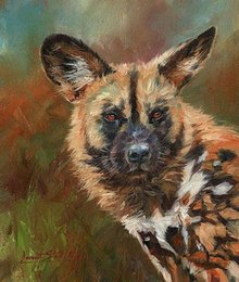 Painting Dog Portraits Australia - Artwork -african-wild-dog-portrait- Unframed Modern Canvas Wall Art for Home and Office Decoration,Oil Painting ,Animal painatings ,frame.