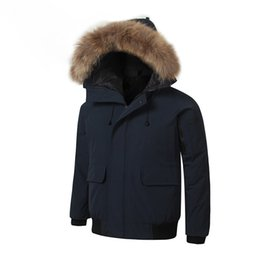mens short parka NZ - 2019 Brand New waterproof windbreaker Mens BOMBER PARKA raccoon fur real feather down short Winter Canada American Style Warm coat