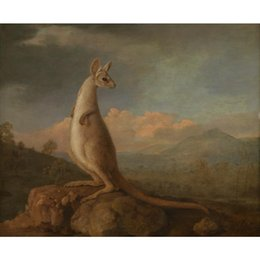 hand painted landscape oil painting Canada - The Kongouro from New Holland oil painting George Stubbs hand painted Landscapes artwork paintings for wall decor