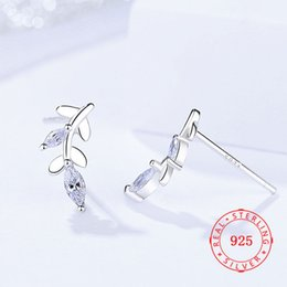 girls wearing earrings NZ - new white cubic zircon earring high quality 925 sterling silver young girl lady jewelry daily wear earrings wholesale