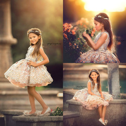 $enCountryForm.capitalKeyWord Australia - 2019 Short Flowers Girls Pageant Dresses Lace Applique Ball Gown Toddlers Cupcake Kids Communion Gowns Princess robes de bal