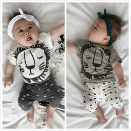 e5fa01690 Summer 2019 Baby Suit Cotton Short Sleeve Lovely Lion Top Trousers  Two-piece Girls Clothing Sets Baby Girl Clothes