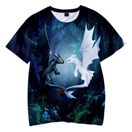 $enCountryForm.capitalKeyWord NZ - Summer T Shirt How To Train Your Dragon Kids 3d Print Tshirt For Boys Girls Children Clothes 3 5 6 7 8 9 10 12 Year Q190523