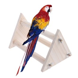 $enCountryForm.capitalKeyWord UK - Color random bird stand stand bar gold sunflower sunflower grey parrot stand training station bar large triangle parrot resistant bite toy