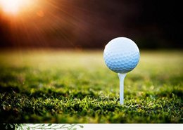 Golf Manufacturer FL Golf Practice Ball Double Layer on Sale