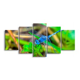 Art Canvas Prints Australia - 5 pieces high-definition print dragonfly canvas painting poster and wall art living room picture QIT5-009