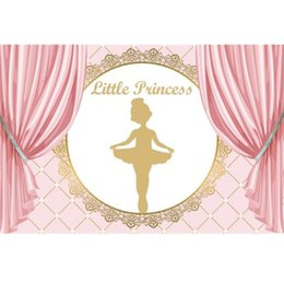 Painting ballet dances online shopping - Laeacco Pink Princess Backgrounds Ballet Dancing Girl Baby Birthday Party Poster Photography Backdrops Photocall Photo Studio