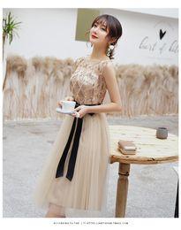 $enCountryForm.capitalKeyWord Australia - 2019 elegant skirt crew neck sheer bow ribbon dress evening dress elegant party mini A-line skirt one-piece dress long skirt