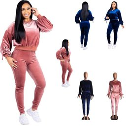 women pink velvet suits UK - Casual Women Velvet Suit Fabric Tracksuits Velour Suit Women Track Suit And Pants Size S -XXL