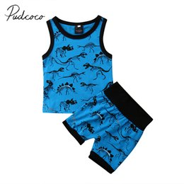 crystal blue flare Canada - 2018 Brand New Summer Casual Toddler Baby Boys Clothes Sets 0-24M Sleeveless Cartoon Dinosaur Blue Vest Tops Shorts 2PCS Set