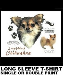 Hair crow online shopping - LONG HAIR CHIHAUHUA DOG HISTORY ORIGIN WEIGHT HEIGHT DESCRIPTION T WS743