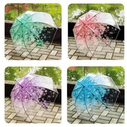 $enCountryForm.capitalKeyWord Australia - Sakura Transparent Umbrella Semi Automatic Kids Umbrellas Cute 4 Colors Umbrella Long Handle Rain Umbrellas Adult Free Shipping