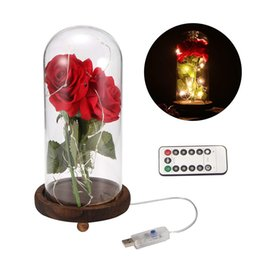 $enCountryForm.capitalKeyWord NZ - LED Beauty Rose and Beast Battery Powered Red Flower String Light Desk Lamp Romantic Valentine's Day Birthday Gift Decoration
