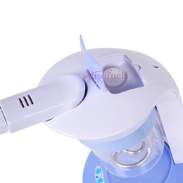 UE libre d'impôt qualité Portable visage soins des cheveux Mini Facial HOT Steamer Salon Table D'ozone Pro machine à usage personnel