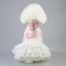 $enCountryForm.capitalKeyWord Australia - Pet clothe Coat Small Dog Coat Supplies Plaid Clothes for Rex rabbit Tutu Dress Princess Skirt Apparel Costume cute Cartoon dresses