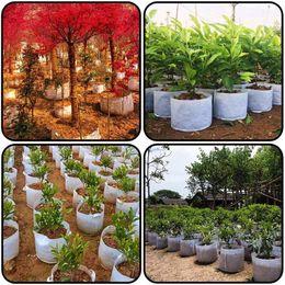 $enCountryForm.capitalKeyWord NZ - Non Woven Plants Planting Bags for Nursery Garden Planting Grow,with Handle Straps Aeration Fabric Pots for Home Garden Potato Tomato