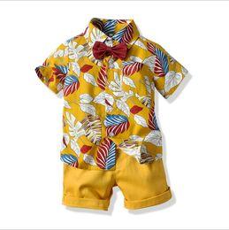 dd3cbe891 2019 Fashion Kids Girl 1-5 years t Shirt Children Lapel Short sleeves T  shirt Boys Tops Clothing Brands Solid Tees Girls Cotton shirts ODFES