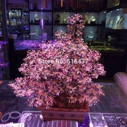 Albero tormalina naturale albero fortunato Albero di cristallo ricco di mucca da masticare Violet arenacea casa di città feng shui arredamento in Offerta