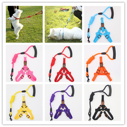 Chinese  1PCS Pet Traction Rope Chest Straps Cats Dogs Leashes With Harness Durable Pet Collar Multicolor 4 Size For Cats Puppy Towser manufacturers