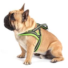 $enCountryForm.capitalKeyWord Australia - Personalized dog harness vest soft reflective night safety nylon dog leash collar Beagle correa perro hundeleine Puppy 45QY71