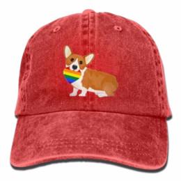 11a6ae85661b8 Adult Gay Pride Corgi Rainbow Heart Denim Baseball Caps One Size Hiking  Bill Caps Unisex Adults Funny Washed Twill Hats