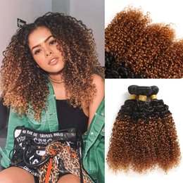 $enCountryForm.capitalKeyWord Australia - Brazilian Ombre Curly Hair Weave Jerry Curly Hair Extensions Ombre Human Hair Bundles 3 pieces lot T1B 30
