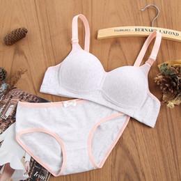 ce3b45d79fd 2019 new non-steel ring thin cotton girls growing bra student bra set girls  comfortable underwear good
