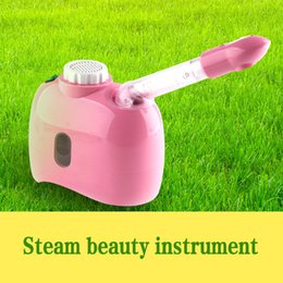 $enCountryForm.capitalKeyWord Australia - Whitening Moisturizing Exfoliating for Women's Beauty Machine Steam Facial Steamer Face Sprayer Vaporizer Beauty Salon Skin Care Instrument